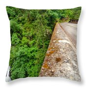 Waterfall And Old Road Throw Pillow