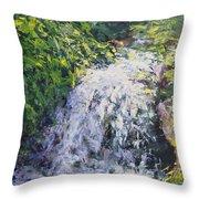 Waterfall At Chicago Botanic Gardens Throw Pillow