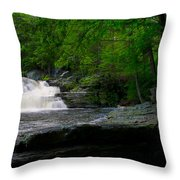Waterfall At George W Childs Park Throw Pillow