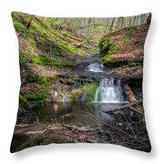 Waterfall At Parfrey's Glen Throw Pillow