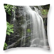 Waterfall Bay Of Fundy Throw Pillow