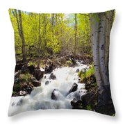 Waterfall By The Aspens Throw Pillow