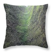 100453-waterfall Chute  Throw Pillow