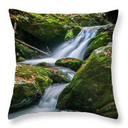 Waterfall Great Smoky Mountains  Throw Pillow