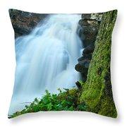 Waterfall - High Water On Falls Brook Throw Pillow