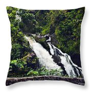 Waterfall I  Throw Pillow