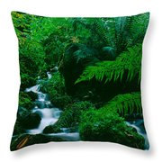 Waterfall In A Forest, Dartmoor, Devon Throw Pillow