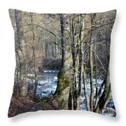 Waterfall In Winter Throw Pillow