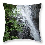Waterfall Mine Kill State Park New York Throw Pillow
