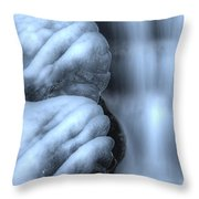 Waterfall Near Johnston Canyon Alberta Throw Pillow