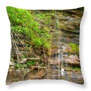 Waterfall On The Way To Thurmond Throw Pillow