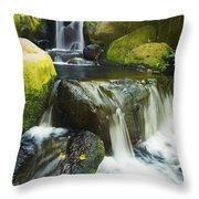Waterfall Stream Throw Pillow