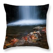 Waterfall And Leaves In Autumn Throw Pillow