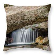 Waterfall Under Fallen Log Throw Pillow