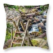 Waterfall Way Throw Pillow