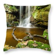 Waterfall With Autumn Leaves Throw Pillow