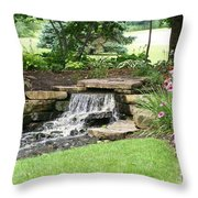 Waterfall With Coneflowers Throw Pillow