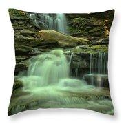 Waterfalling Through Ricketts Glen Throw Pillow