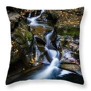 Waterfalls At Watkins Glen Throw Pillow