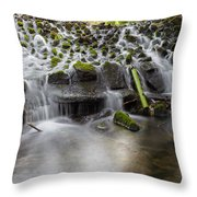 Waterfalls In Marlay Park Throw Pillow