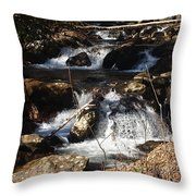 Forever Flowing Throw Pillow