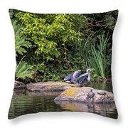 Waterfowl Pond Throw Pillow
