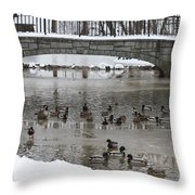 Watering Hole Ducks Only Throw Pillow