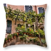 Watering Is A Pain Throw Pillow