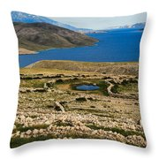 Watering Place Throw Pillow
