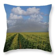 Watering The Corn Throw Pillow