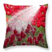 Watering The Garden Throw Pillow