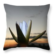 Waterlilly 3 Throw Pillow
