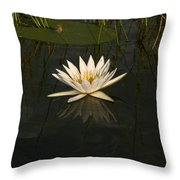 Waterlilly 5 Throw Pillow