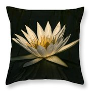 Waterlilly 7 Throw Pillow