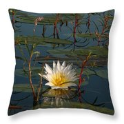 Waterlilly 8 Throw Pillow