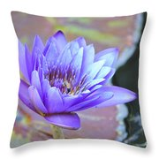 Waterlily And Bee Throw Pillow