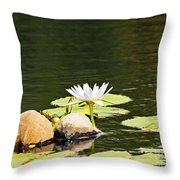 Waterlily And Coconuts Throw Pillow