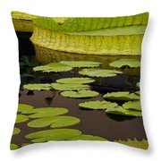 Waterlily Charm Throw Pillow