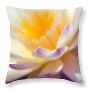 Waterlily Dreams 11 Throw Pillow