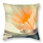 Waterlily Dreams 7 Throw Pillow