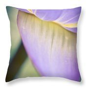 Waterlily Dreams 8 Throw Pillow
