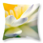 Waterlily Dreams 9 Throw Pillow