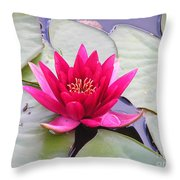 Waterlily In A Pond Throw Pillow