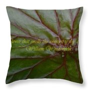 Waterlily Leaf Macro Throw Pillow