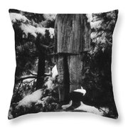 Waterman's Statue Throw Pillow