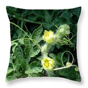 Watermelon Flowers And Vine Throw Pillow