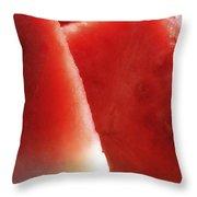 Watermelon Heaven Throw Pillow by Joseph Hedaya