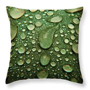 Raindrops On Watermelon Rind Throw Pillow