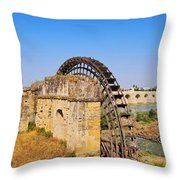 Watermill In Cordoba Throw Pillow