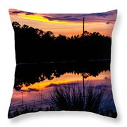 Waterpaints Throw Pillow